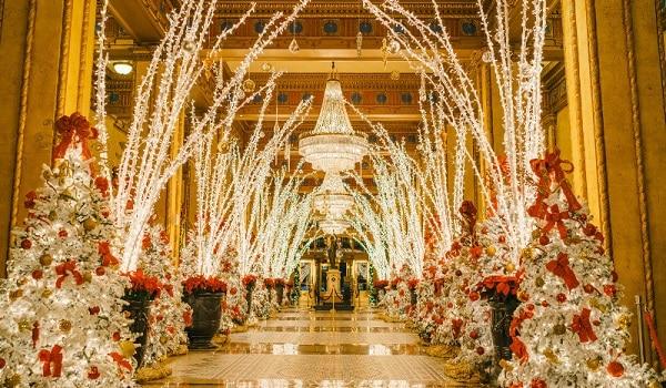 nola christmas lights